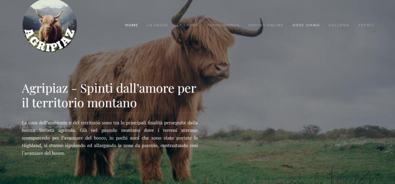 Sito web Agripiaz Milano - web design - metaweb web agency